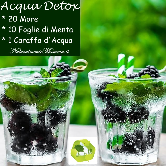 Acqua Detox More Menta