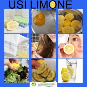 Limone Modificata